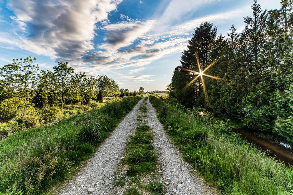 Briuso pėsčiųjų takas