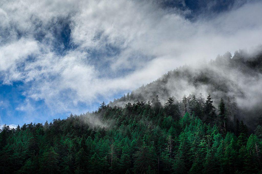 Karalienės Šarlotės arba Haida Gvai salynas