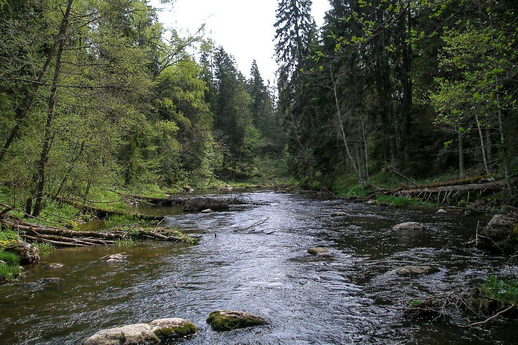 Lahemos nacionalinis parkas
