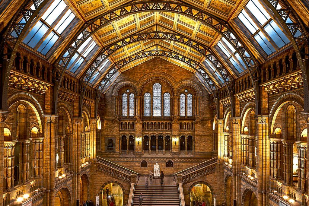 Londono gamtos istorijos muziejus londone