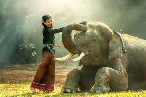 Ką pamatyti Kambodžoje