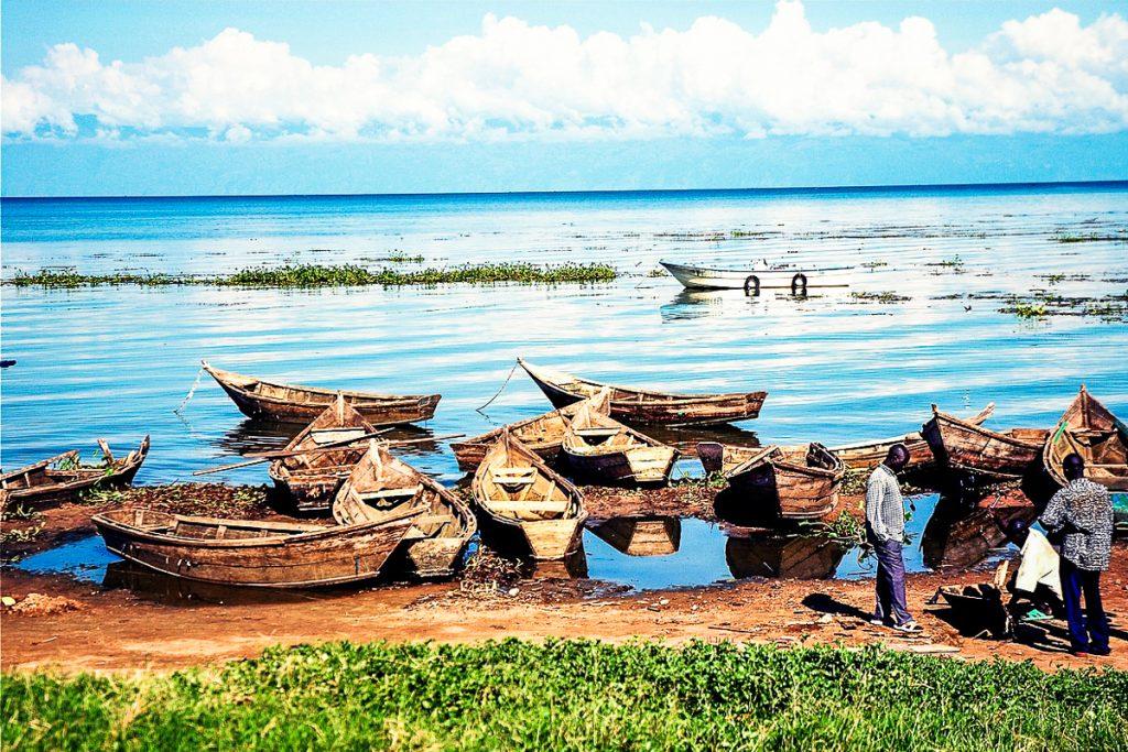 viktorijos ezeras tanzanijoje
