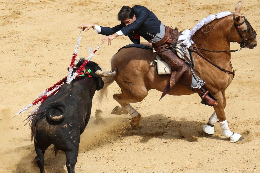 Valensijos bulių kautynių arena