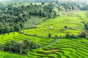 Chiang Mai lankytinos vietos