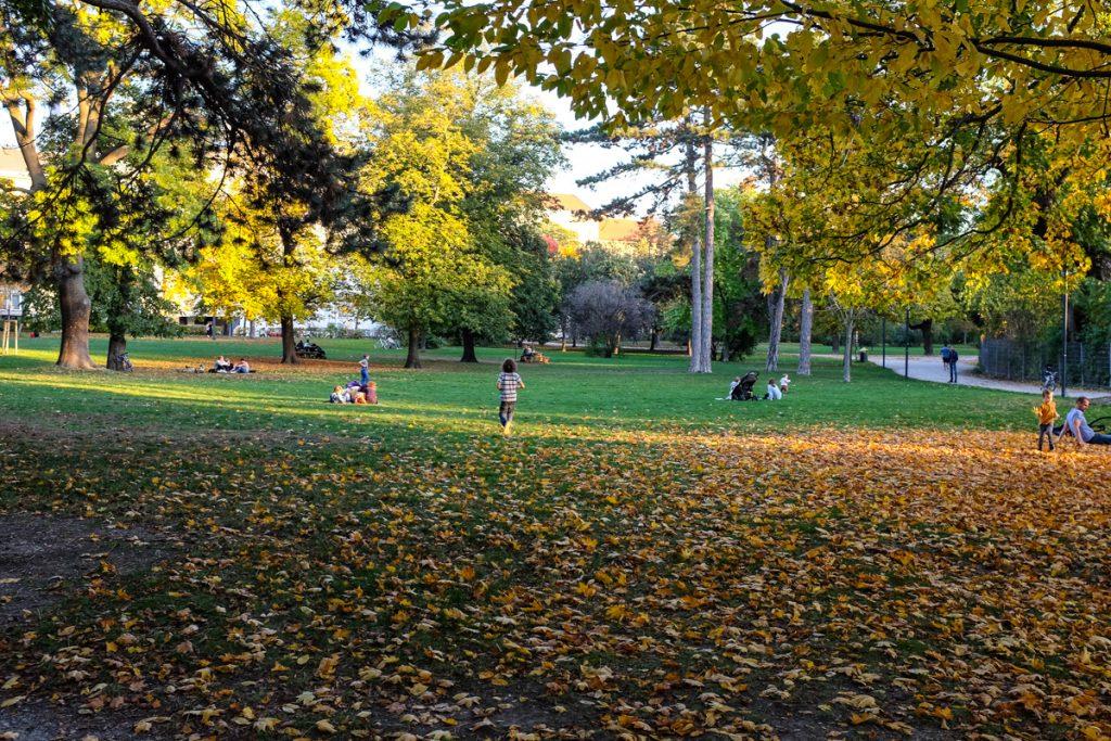 Vienos miesto parkas