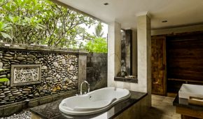 Viešbutis Ubudas vonia