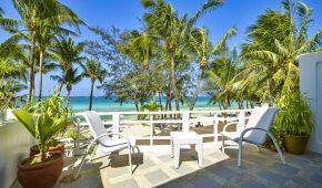 Borakajus viešbutis palmės