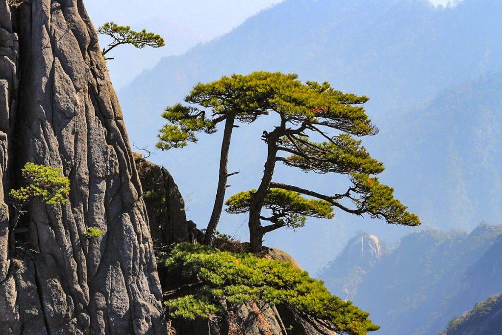 Tai Šano kalnas