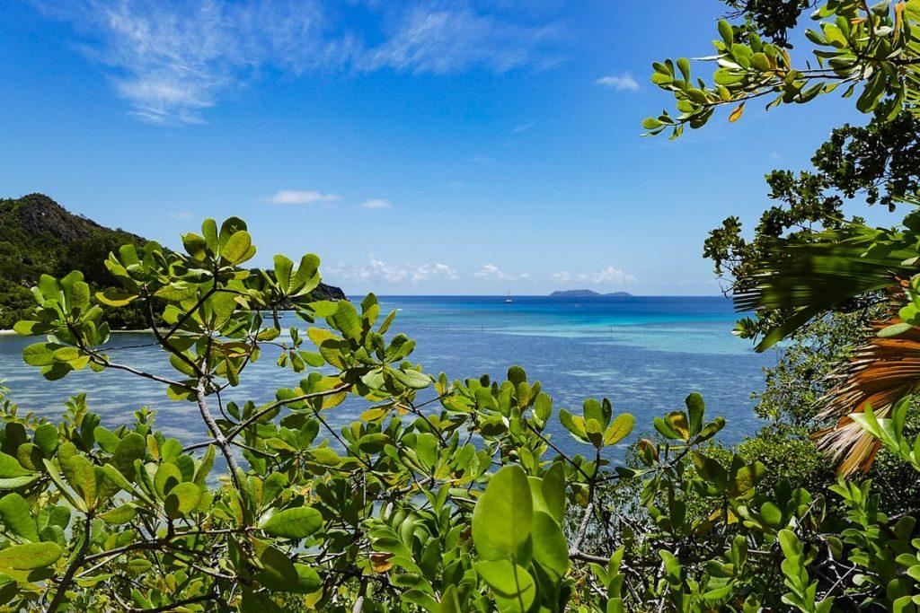 Kurjezo sala