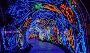 Dubajaus šviesų sodas